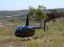 Heli-Sales Australia R44 Raven II